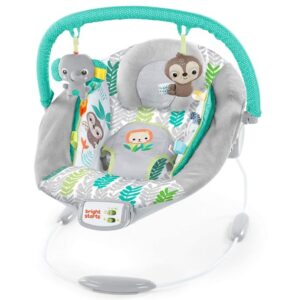 Best Baby Bouncer Seat